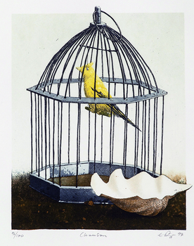 Still life art canvas prints canvas painting modern decorative art cartoon pictures birds caged with shells scenery prints